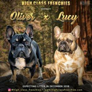Oliver-X-Lucy