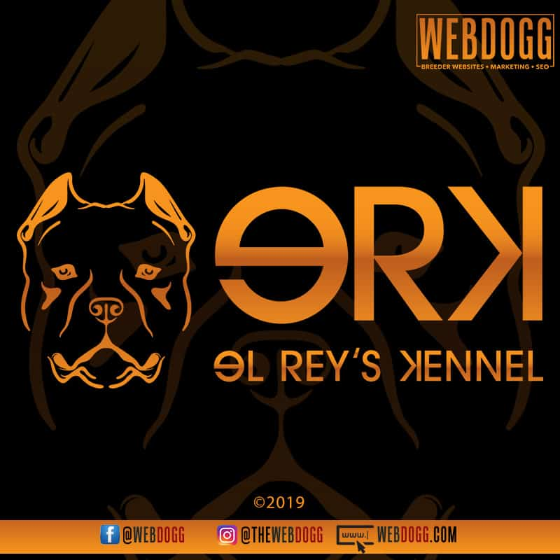 El Rey's Kennel - American Bully