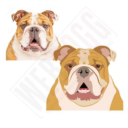 Bulldog Photo To Vector