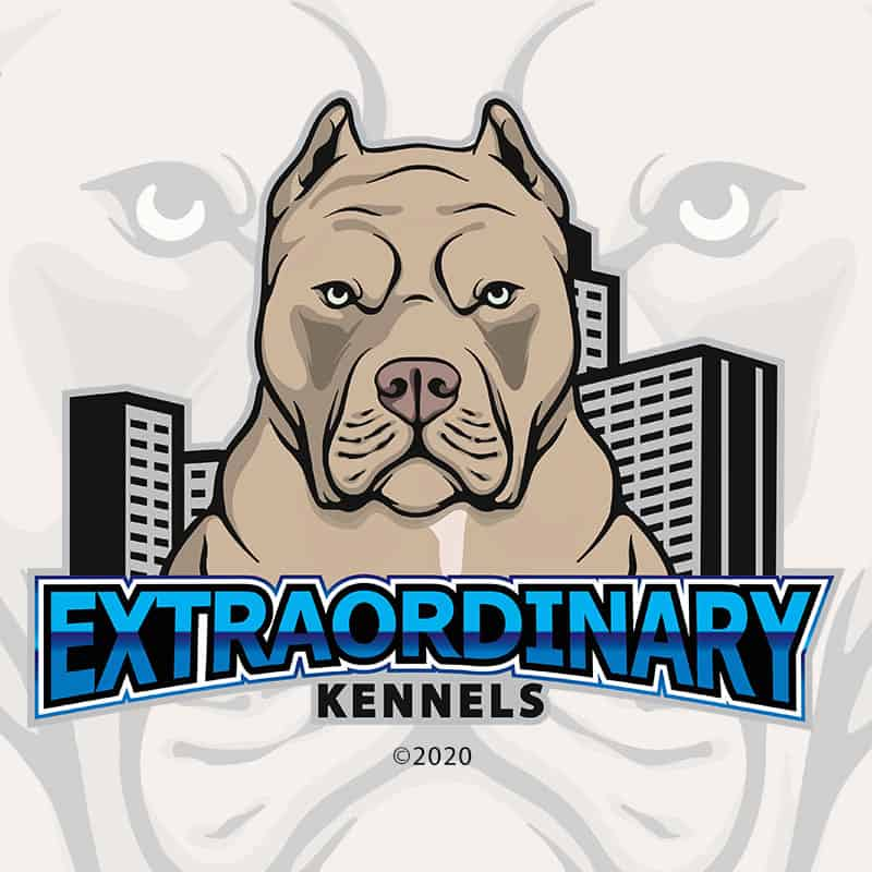 Extraordinary Kennels - Logo Design